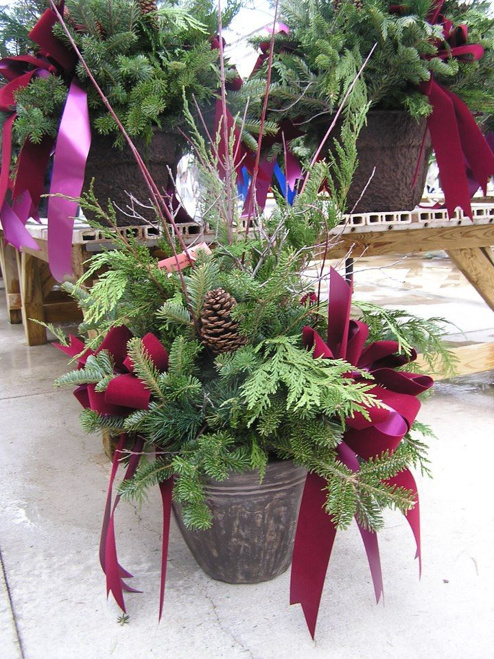 chistmas-container-burgundy